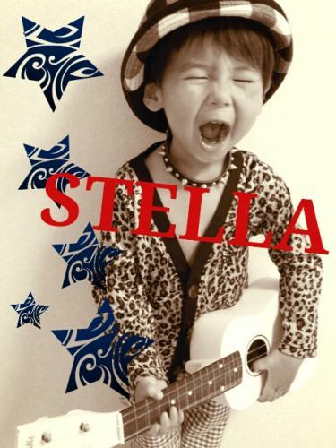 ステラ☆年末